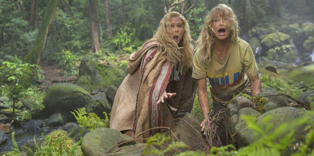 15_snatched-pic1-with-goldie-hawn